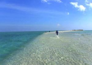 Wisata di Gresik Pulau Noko